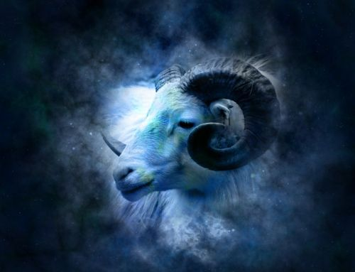 Jak się UCZY BARAN? – Horoskop SzybkiAngielski.pl